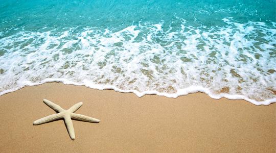 Seis aplicaciones para este verano